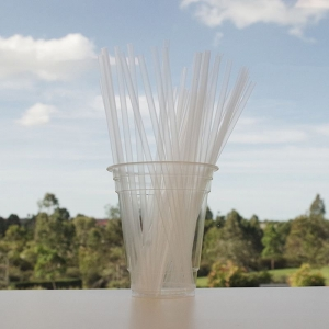 Straw Regular CL Eco-Oxo CTN