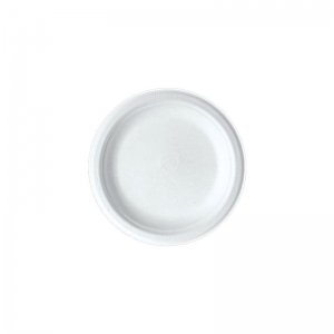Sugarcane Plate 6in Ux20