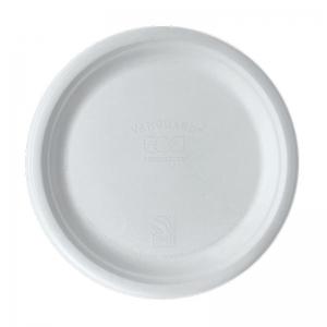 Sugarcane Plate 10in Ux10