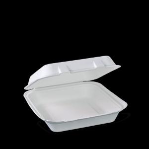 Eco S/Cane Lunch Box S CTN